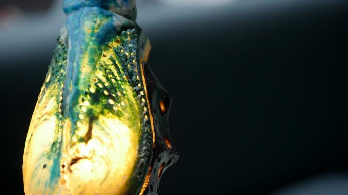 Tribute to William Morris 4 johe bruneau